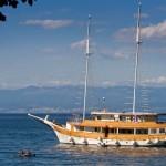 Brod Lastavica