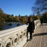 Brücke im Central Park
