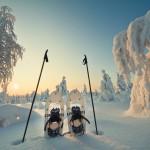 Schneeschuhwanderung Finnland